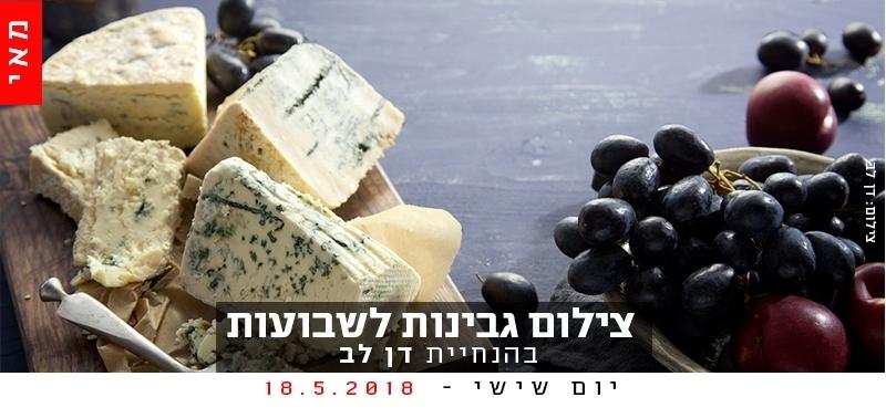 צילום גבינות לשבועות
