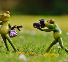 להתחיל לצלם