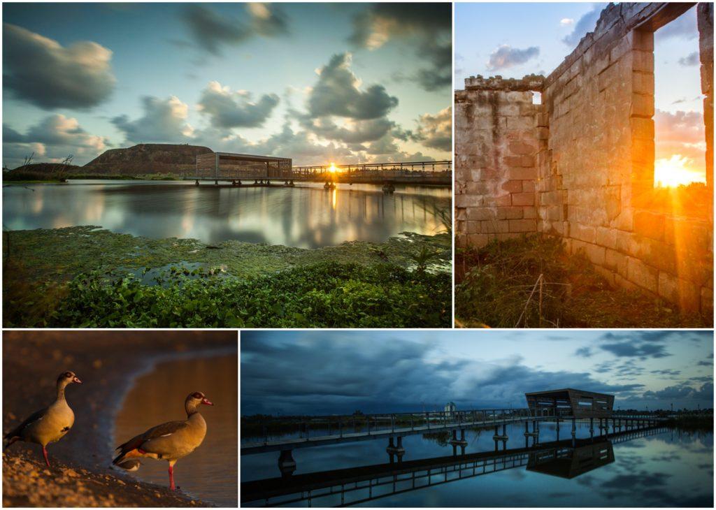 צילום מקצועי נוף בטבע