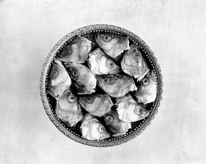 צילום אוכל, צילום זכרון